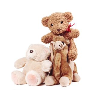 toys untested customer returns