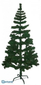christmas trees stock lot